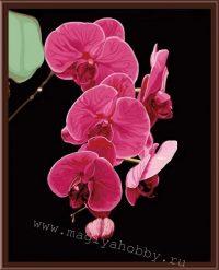 "рисование по номерам ""Ветка орхидеи"""