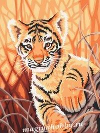 Раскраска по номерам  «Тигренок в джунглях»