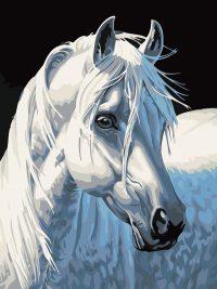 """раскраска по номерам """"Белая лошадь"""""""