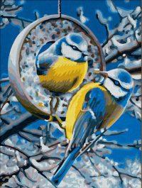 Синички зимой