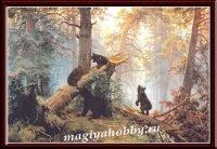 Раскраска по номерам «Утро в сосновом лесу»