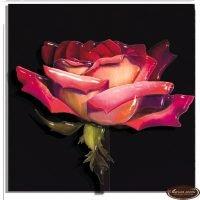 Роза рассвет