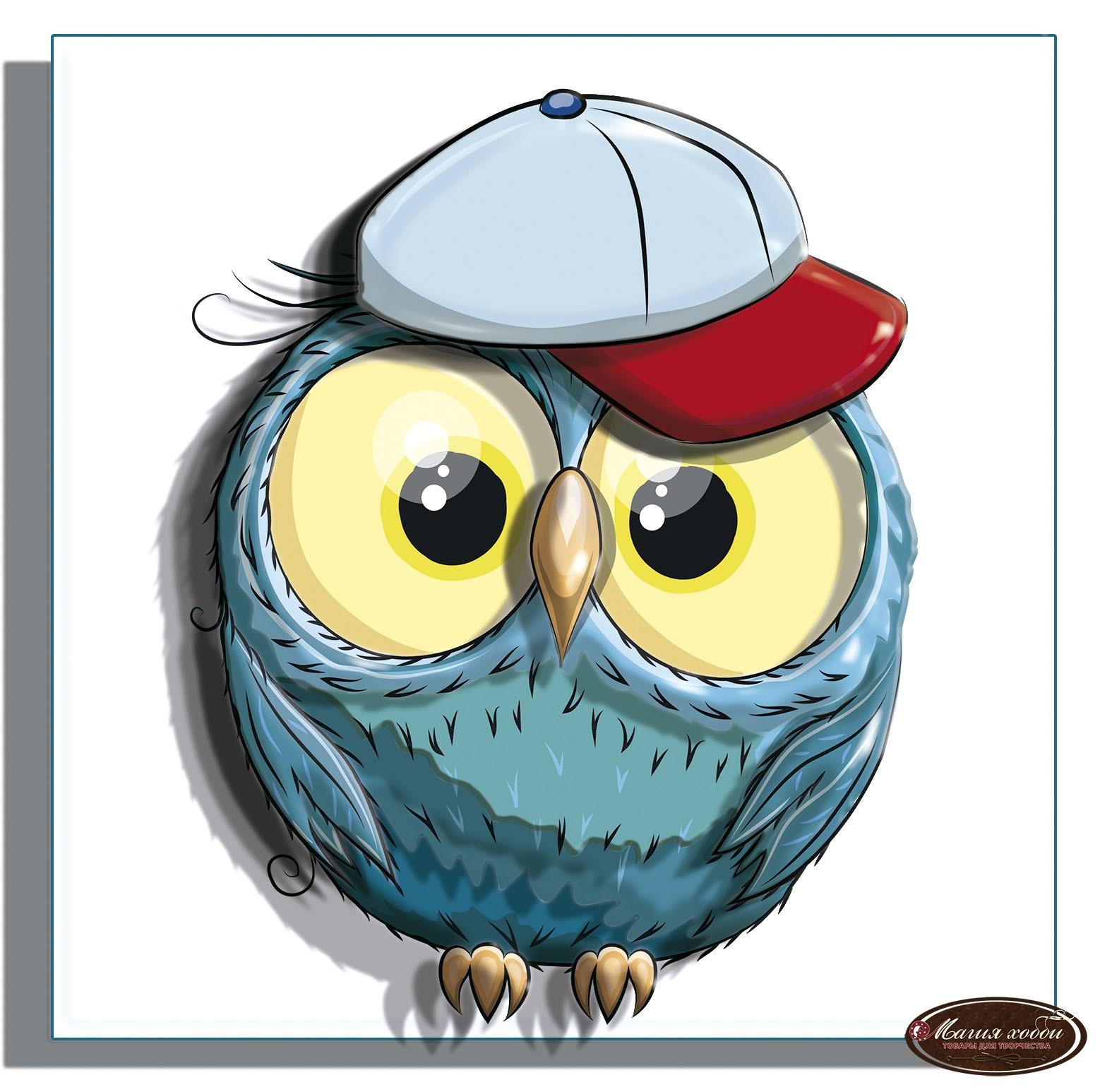 Смешные совы в рисунках, про студентов