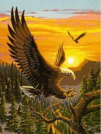 """раскраска по номерам """"Гордый орел"""""""