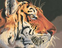 """рисование по номерам """"Королевский тигр"""""""
